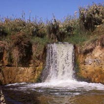 Fayoum Day Tours